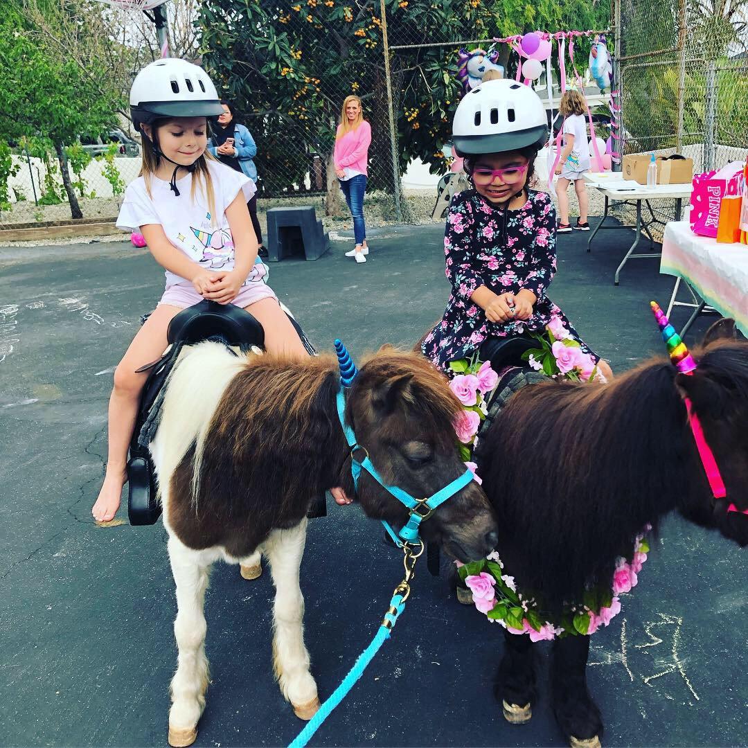 Pony Ride - 3 Ponies 1 Hour