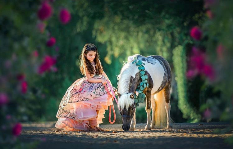 Pony Ride - 2 Ponies 2 Hours