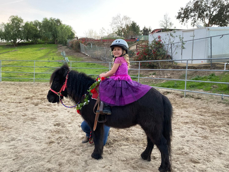 Pony Ride - 1 Pony 1 Hour