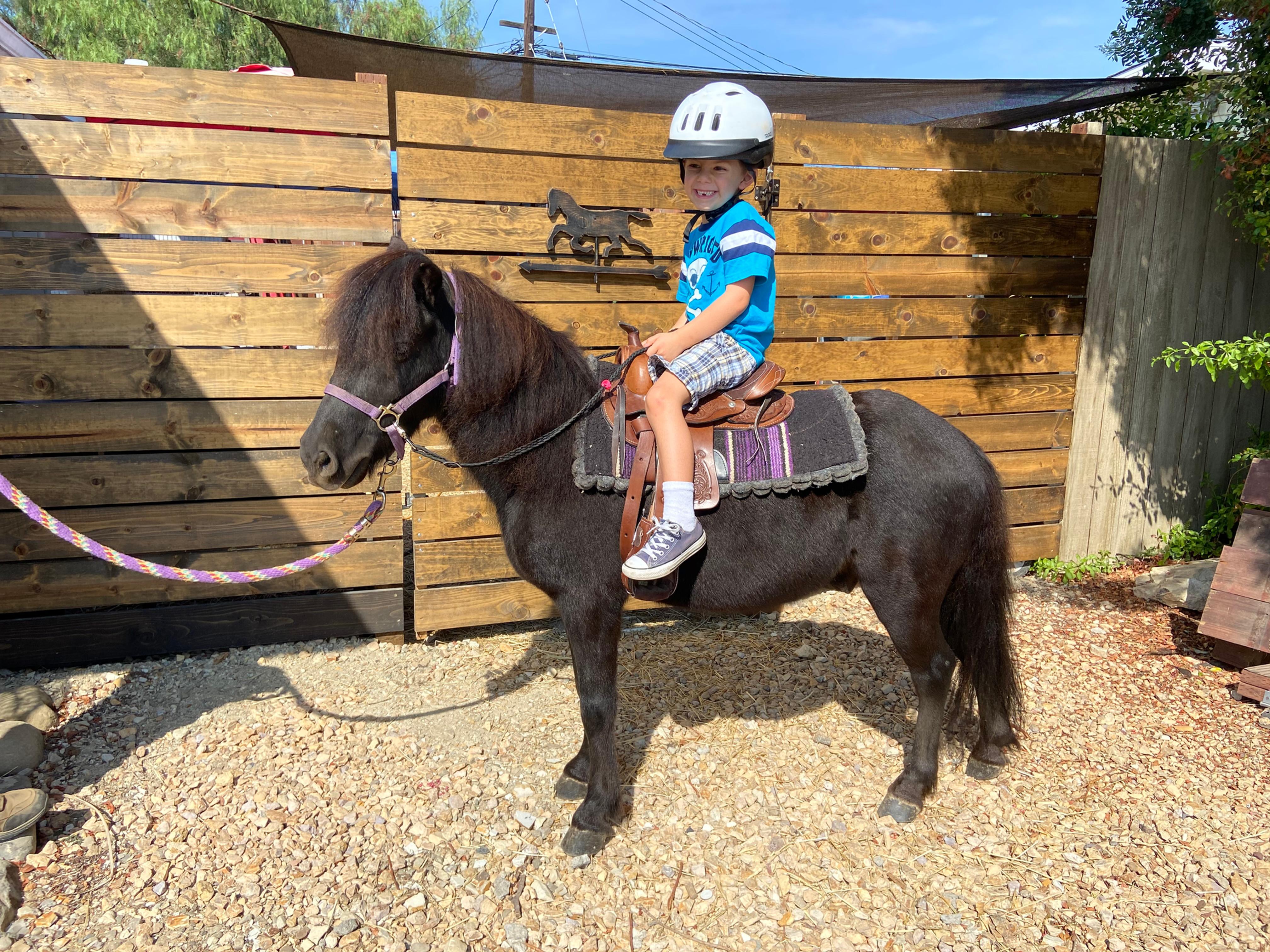Pony Ride - 1 Pony 2 Hours