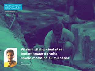 Vitalum vitalis: cientistas tentam trazer de volta cavalo morto há 40 mil anos!