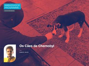Os cães de Chernobyl