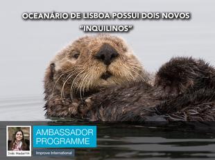 """Oceanário de Lisboa possui dois novos """"inquilinos"""""""