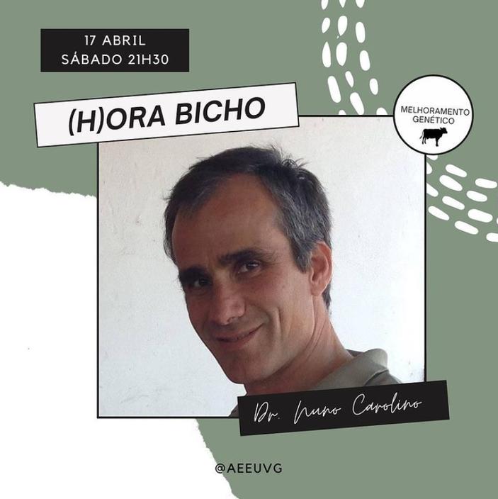 Professor Doutor Nuno Carolino