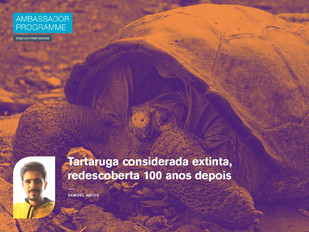 Tartaruga considerada extinta, redescoberta 100 anos depois
