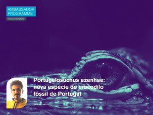 Portugalosuchus azenhae: nova espécie de crocodilo fóssil de Portugal