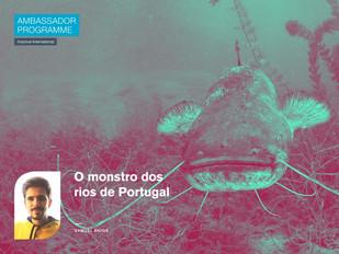 O monstro dos rios de Portugal