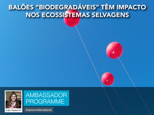 """Balões """"biodegradáveis"""" têm impacto nos ecossistemas selvagens"""