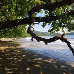 La Playa Dominicalito