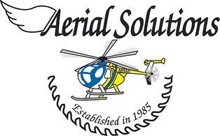 ASI Logo_FINAL.jpg