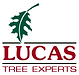 lucas_high.png