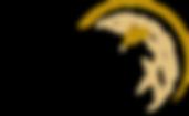 dbis_logo_black_gold_sm.png