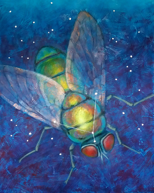 Photon Fly (constellation Musca Borealis