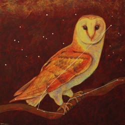 Astro Owl (constellation Noctua)