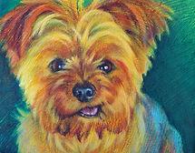 Pet portrait - Rudy Schanilec.jpg