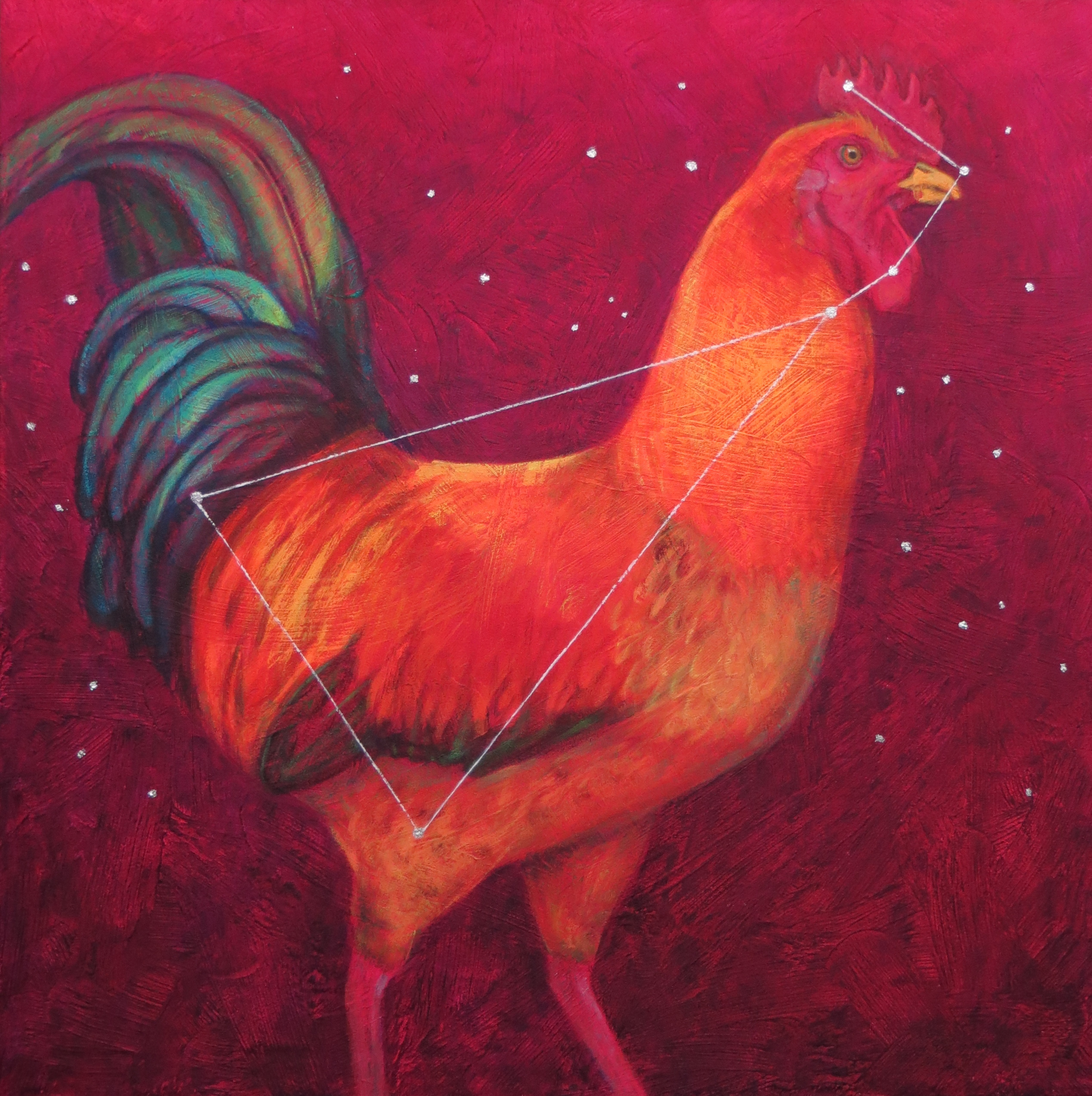 Quantum Cockerel (constellation Gallus)