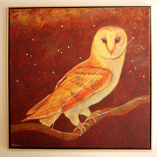 "Astro Owl (lost constellation Noctua) - 31"" x 31"""