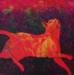 Cosmic Kitty (constellation Felis)