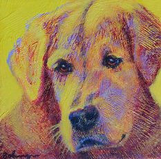 Pet portrait - Lily Christy.jpg