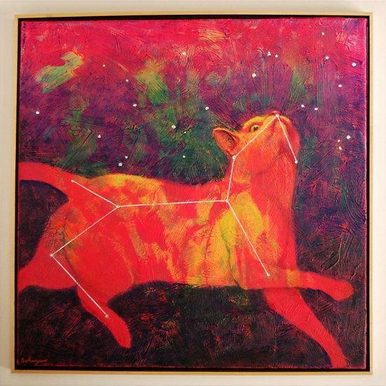 "Cosmic Kitty (lost constellation Felis) - 31"" x 31"""