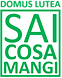 saicosamangi_edited.png