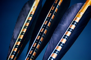 Crested Arrow black-gold close up II - A