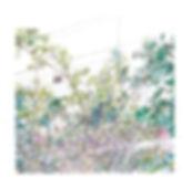 Nicola Saunderson 0269 LowRes.jpg