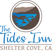 TI NEW logo.png