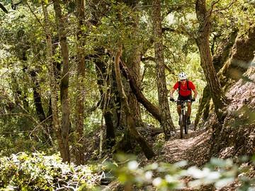BLM Mountain Bike Trail