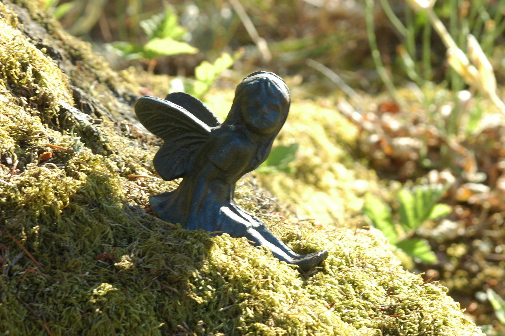Fairies everywhere at Spirit Wind Ridge