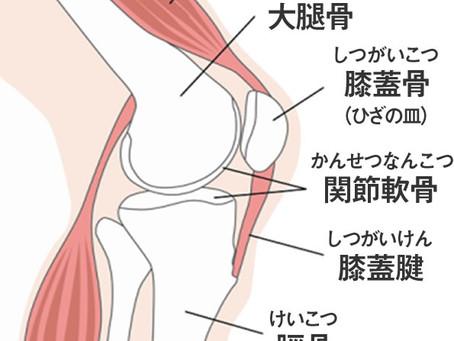 八王子市宇津木台で膝の痛みでお悩みなら宇津木台たにあい整骨院へ!