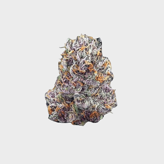Purple Queen 7g