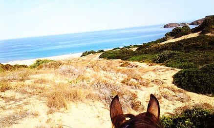 horse trekking sardegna