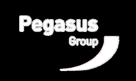 PEGASUS WHITE.png