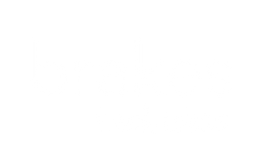 BRAKES copy.png
