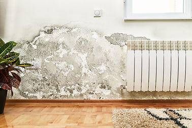 Damage caused by damp on a wall in modern house.jpg