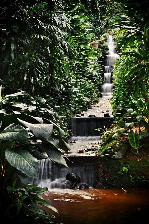 Cachoeira no Jardim Botânico do Rio de Janeiro.