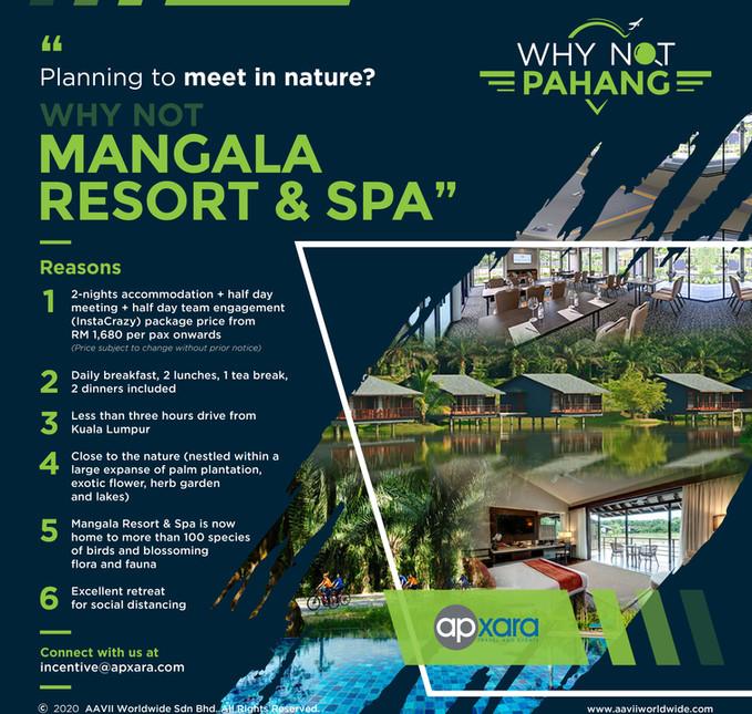 Why Not - Mangala Resort & Spa