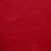 Anticato Rosso
