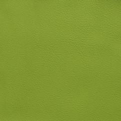 Verde Barcelona