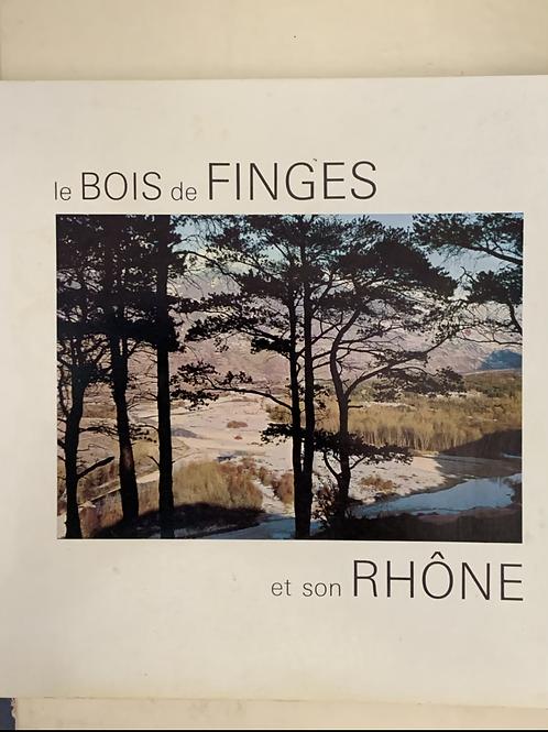 Le bois de Finges et son Rhône