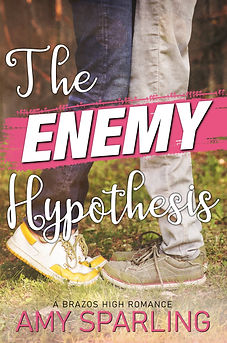 The Enemy Hypothesis_ebook copy.jpg