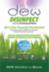 DEW Disinfect vs Bleach.jpg