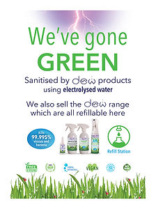 We Have Gone Green A4 Poster.jpg