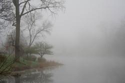 pond+2