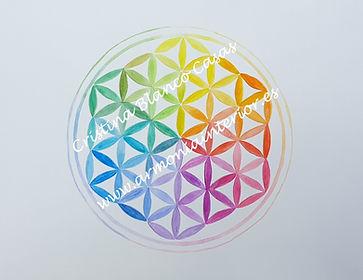 Flor de la vida arcoiris, geometria sagrada, flor de la vida sanadora, flor de la vida color, arte sanador, arte espiritual, arte que sana
