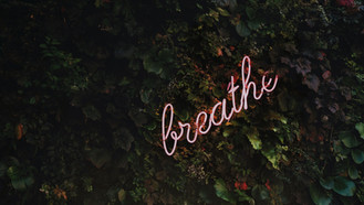 Quiet your Heart and Regulate your Breathing