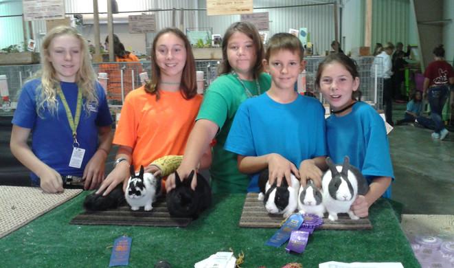Deschutes county fair with the rabbits