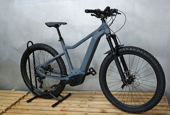 Brand new electric mountain bike, or e b
