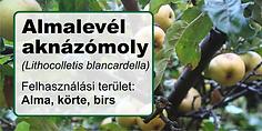 Almalevel_aknazomoly_cimke.png